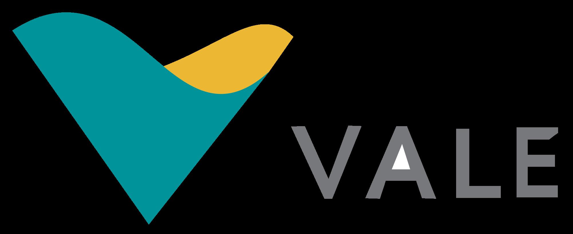 VALE</br> Mineração