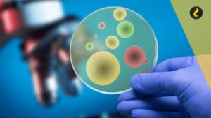 bactérias no biodiesel diesel
